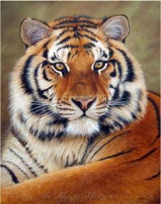 Jason Morgan - Tiger Painting