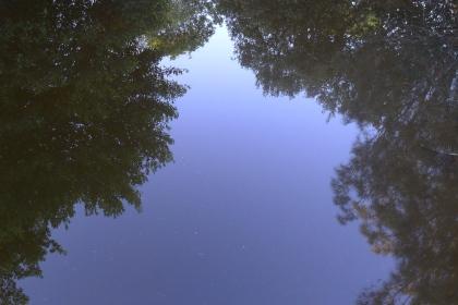 Reflections, Bundeena 2011. Photo by Ace Bourke.