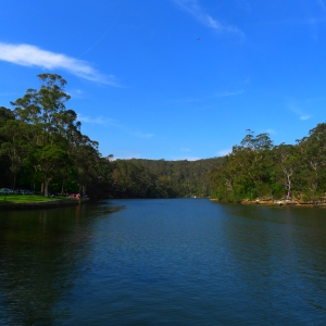 Audley Weir National Park Sydney, November 2011. Photo by Ace Bourke.