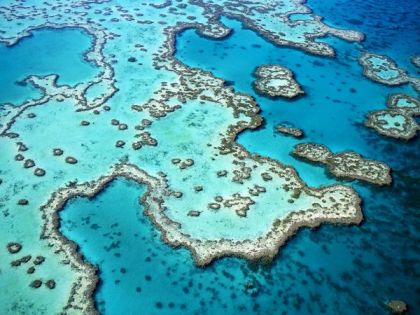 Great Barrier Reef. Image sourced from National Geographic