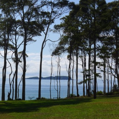Near Batemans Bay, NSW