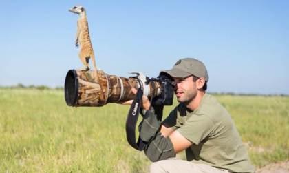 Meerkats in Makgadikgadi, Botswana. Photographer  Will Burrard-Lucas