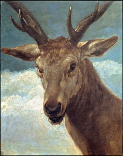 Head of a Stag by Diego Velázquez. Courtesy of Museo Nacional Del Prado.