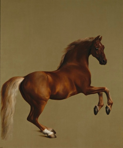 Whistlejacket by George Stubbs. 1762. Courtesy The National Gallery.