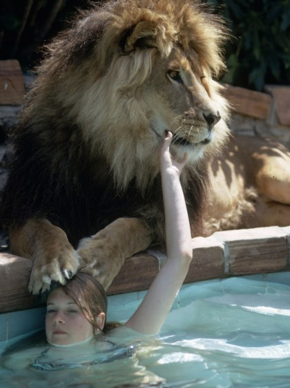 Melanie Griffith with her pet lion, Neil, in 1970s. Image courtesy The LIFE Picture Collection/Gett Michael Rougier