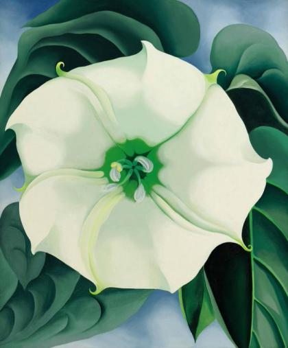 Jimson Weed White Flower No 1 by Georgia O'Keeffe 1932
