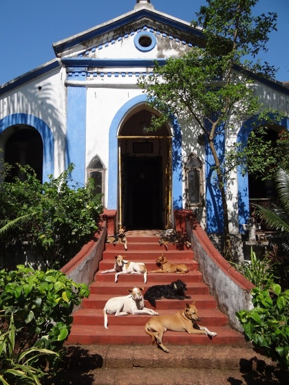 Goa. Photograph by Fionna Prins.