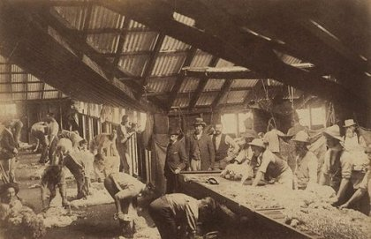 Shearing shed, (1886-1891), Charles Bayliss