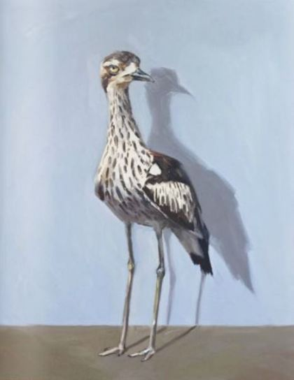 Curlew by Zoe Tweedale, exhibiting at Robin Gibson Gallery, Sydney